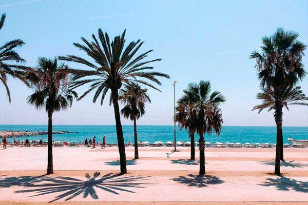 Paseo marítimo de Barcelona   Construir el borde del mar   Terrapilar